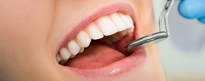 Dental Services in Northborough, MA
